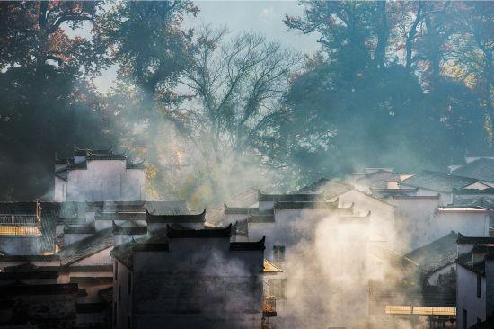清晨的晨雾