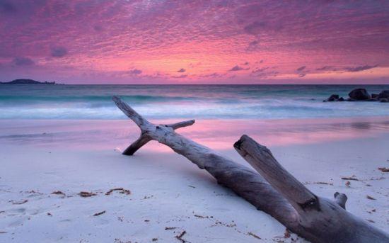 塞舌尔群岛