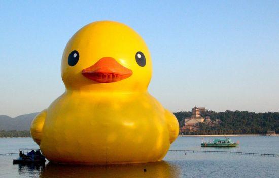 环游世界的大黄鸭