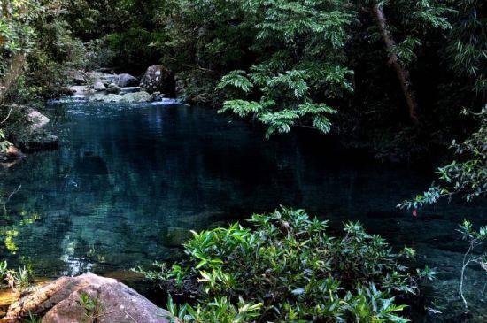 攀揽着紫玉盘藤,溪涧争流,水花斜飞,积成了深潭