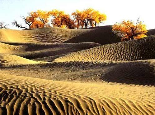 浩瀚如海的塔克拉玛干沙漠