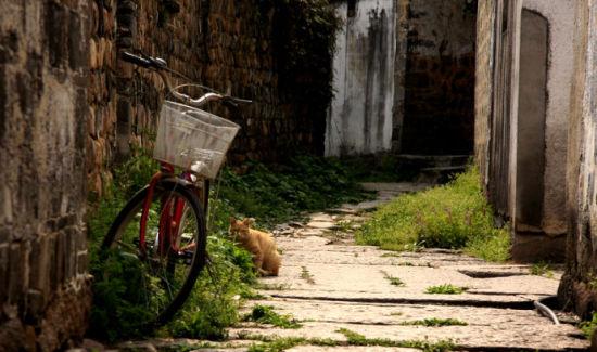 村子里的巷道