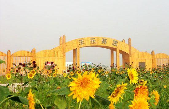 盘点郑州周边农家乐 假期出去不扎堆了
