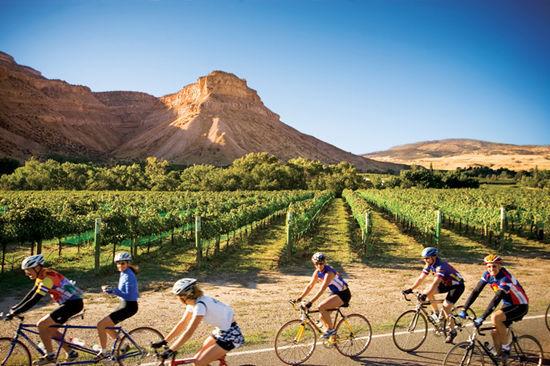骑行在科罗拉多葡萄酒村