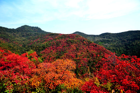 秋季旅游好去处 西安周边赏秋地