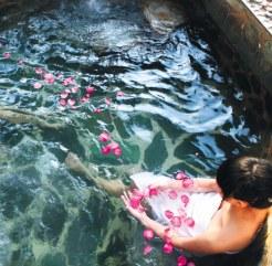 温泉浴的奢华盛宴