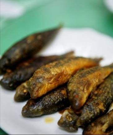 巴马长寿乡的特产:油鱼(图)(4)