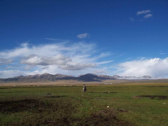 热尔大草原
