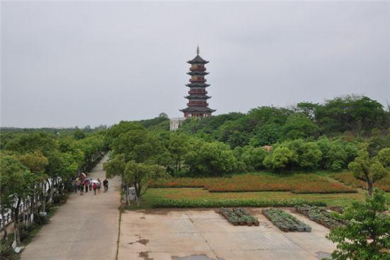 南昌象湖森林公园
