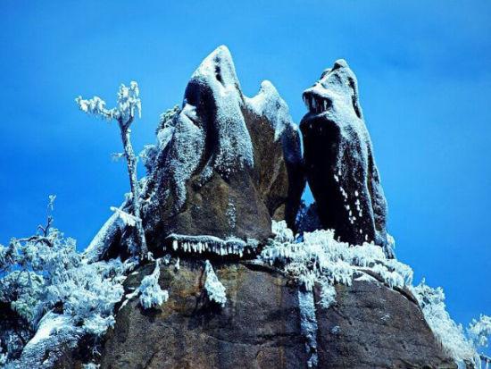 景区内花岗岩峰林怪石妙相奇异,奇松满山遍岭,风景清奇秀丽宛若天上清
