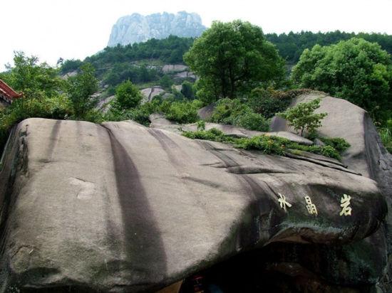 广西灵山养殖蛇场图片