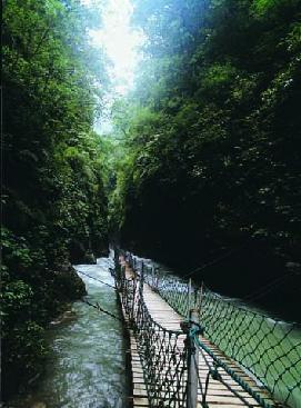 重庆万盛黑山谷生态旅游区