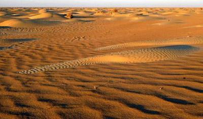 罗布泊地区一处沙漠的景色,这种沙漠以星月形沙丘著称。