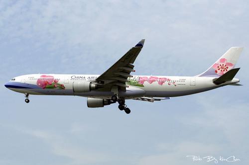 蝴蝶兰彩绘飞机