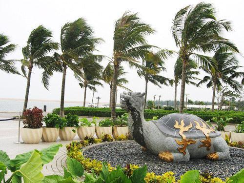 海南自助游:三条纵线探椰岛原味(图)