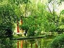 迪沟生态乐园