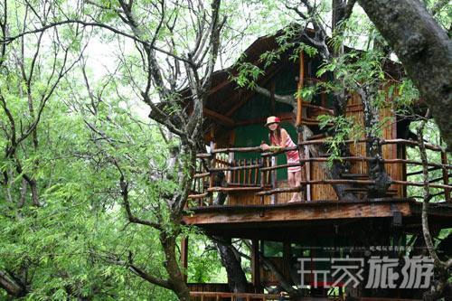 南山景区的生态树屋值得体验,有酸豆树的遮阳,又因临海而建,不时有海风吹来