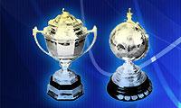 2010年汤姆斯杯&尤伯杯