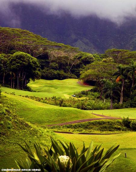 壮观的热带雨林曾是电影《侏罗纪公园》的取景地