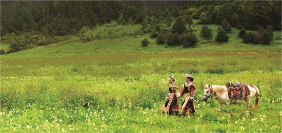 神山圣湖高谷雪峰 西藏美景图片欣赏_图片_新浪户外_新浪体育_新浪网