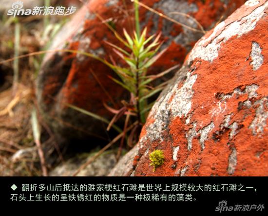 翻折多山后抵达的雅家梗红石滩是世界规模较大的红石滩之一。