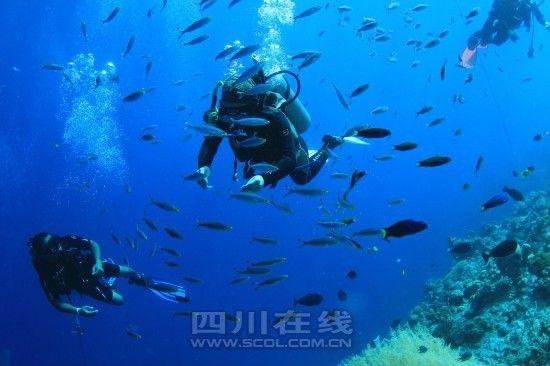 成都潜水发烧友世界各地找水潜。