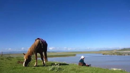度假旅游好去处:黄河九曲第一湾 策马奔腾享自然