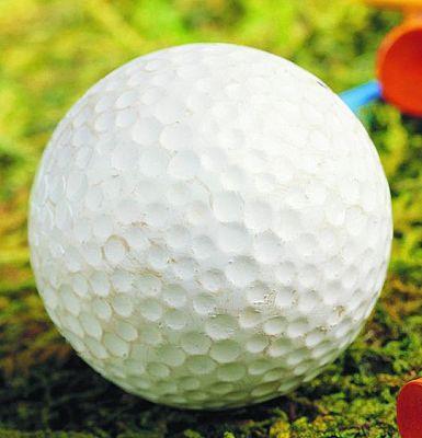 投身高尔夫运动