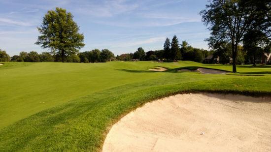 如何让高尔夫球场沙坑斜坡草坪安全度夏图片
