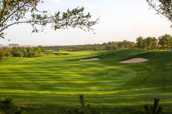 2014中国高尔夫十大新闻 球场整顿居首张新军上榜