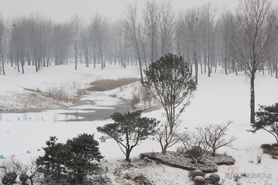 简单的雪景铅笔画