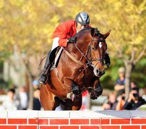 2010全国马术场地障碍冠军赛奥运骑手李振强折桂