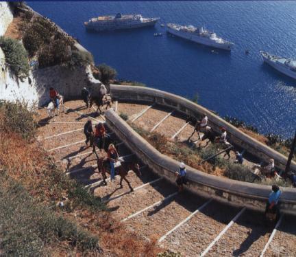 图文-希腊著名景点一览 桑托林岛的毛驴自行车