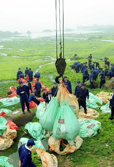 滸苔清理情形。圖片來源:新華社