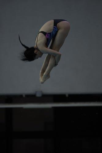 图文-国家跳水队赴香港访问表演 动作一丝不苟