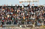 图文-F1摩托艇阿布扎比站正赛观众如潮