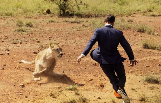 呼吁保护野生动物