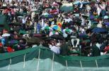 图文-温网女单半决赛郑洁迎战小威大雨又中断比赛